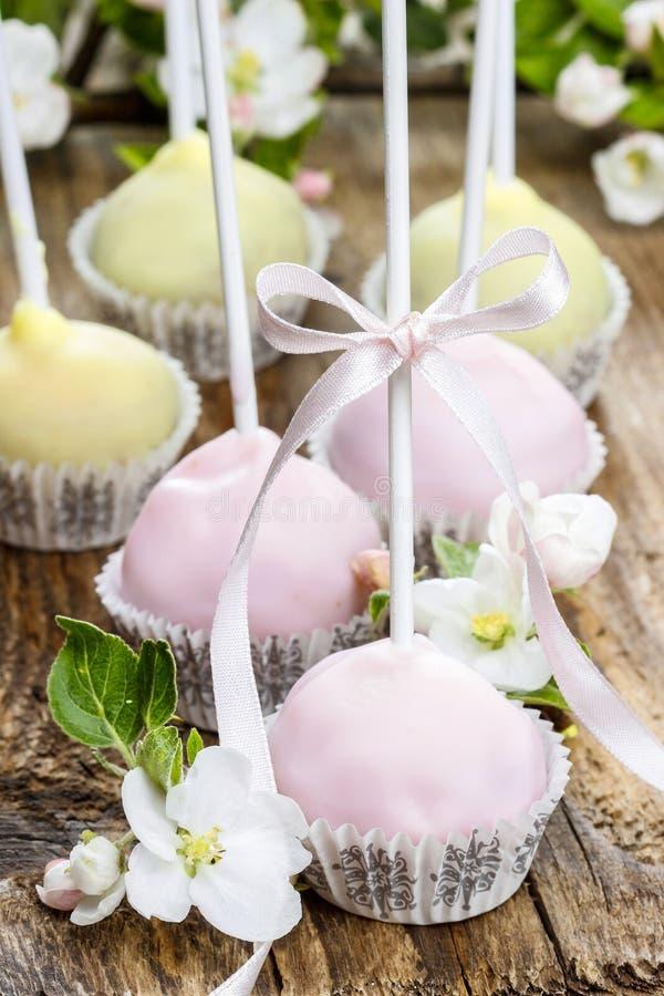淡色蛋糕在浪漫春天集合流行 免版税库存照片