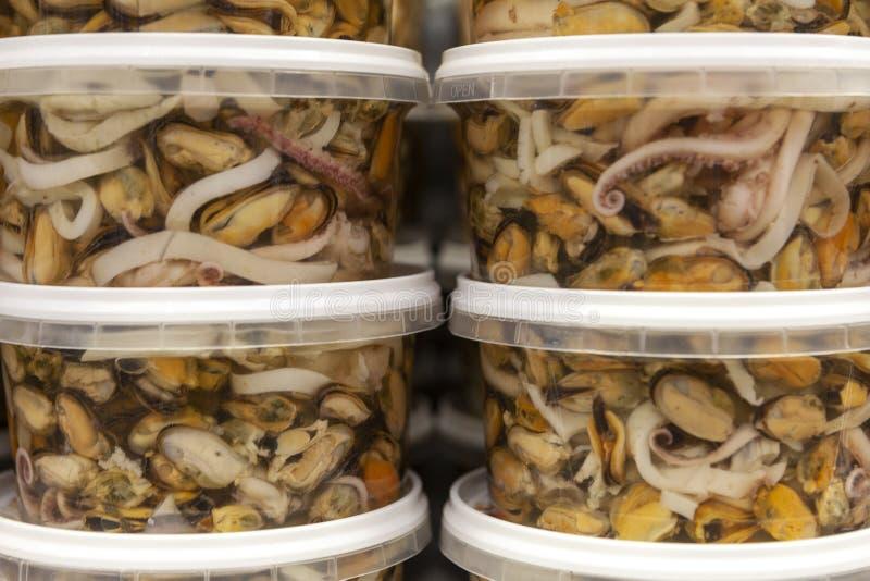 淡菜、乌贼和章鱼在塑料银行中,侧视图,关闭 库存图片