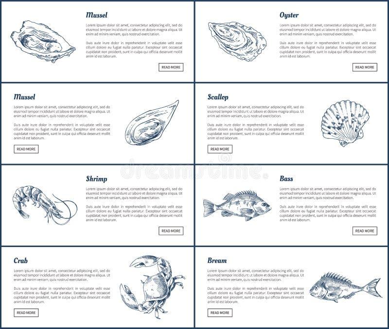 淡菜和牡蛎海报设置了传染媒介例证 向量例证