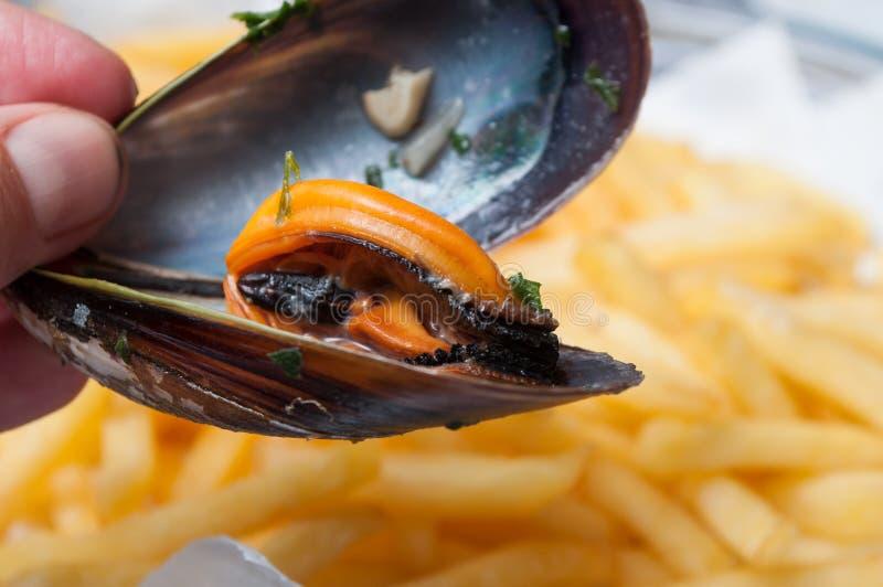 淡菜在手中在restaura的炸薯条背景 库存照片