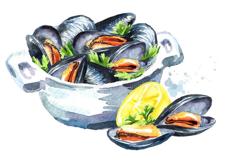 淡菜用在一个碗的草本用柠檬,海鲜,在白色背景隔绝的水彩手拉的例证 库存例证