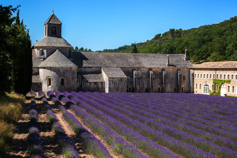 淡紫色广告Senanque修道院 免版税库存照片