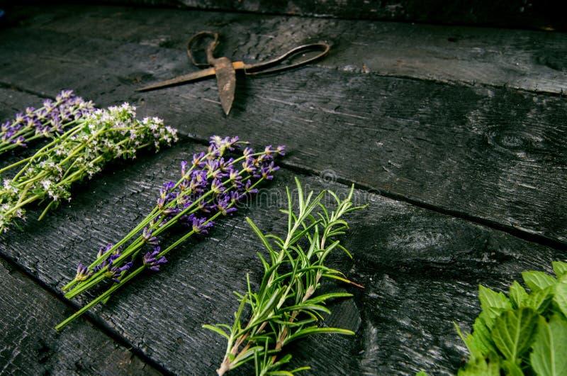 淡紫色开花,迷迭香,薄菏,麝香草,与老剪刀的蜜蜂花在一张黑木桌上 被烧的木头 温泉和化妆用品或者cookin 免版税库存图片