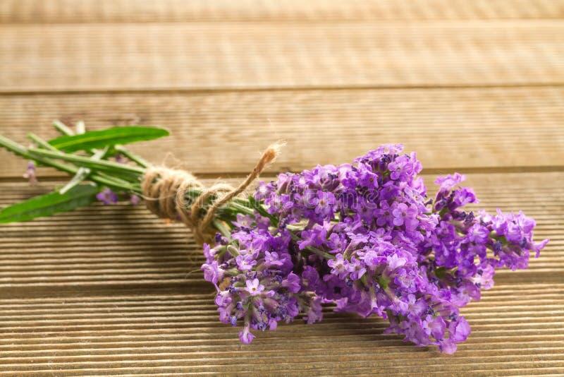 淡紫色束 免版税库存照片