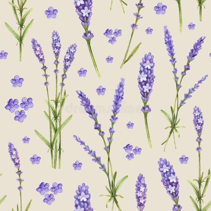淡紫色花例证 向量例证