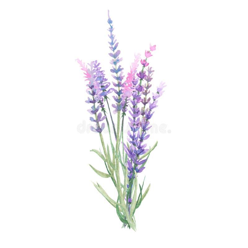 淡紫色花束