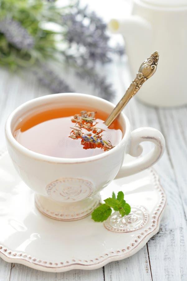 淡紫色茶 库存照片
