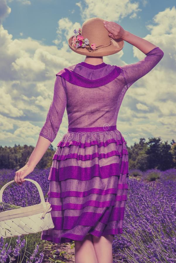 淡紫色领域的妇女 图库摄影