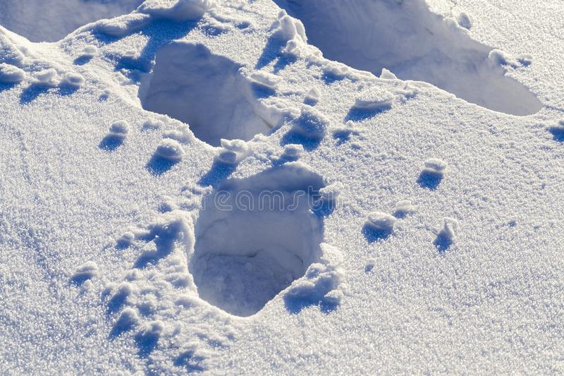 深刻的雪漂泊 库存图片