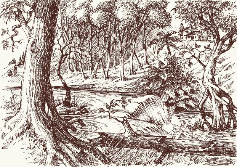 深森林手图画 库存例证
