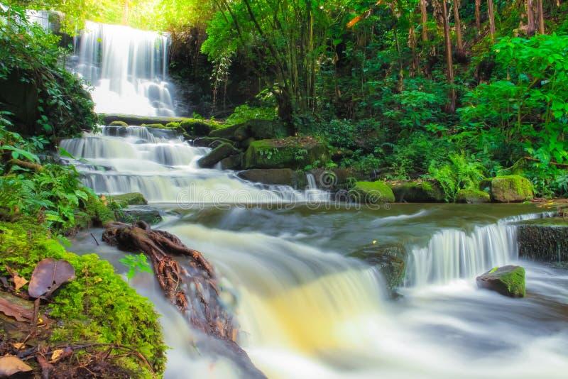 深森林瀑布在泰国 库存照片