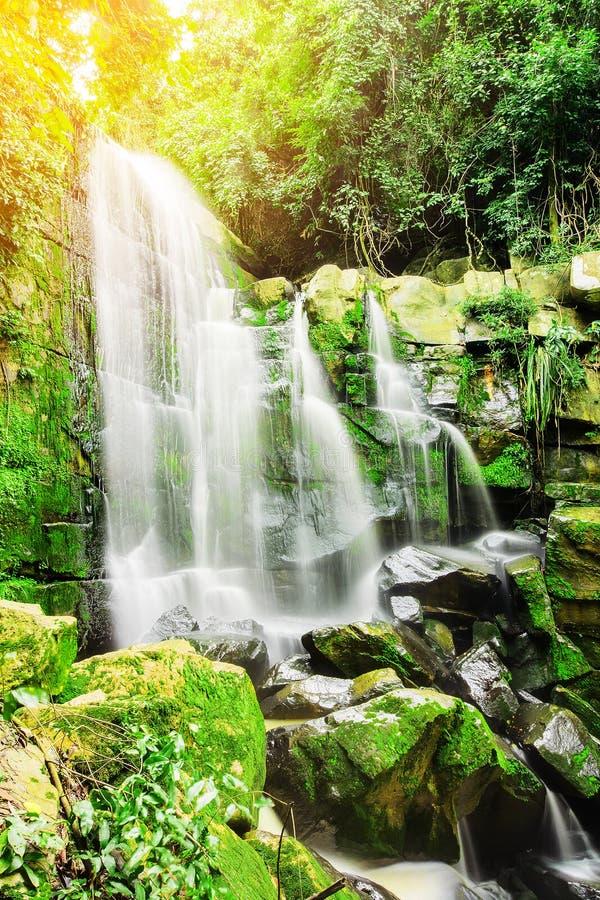 深森林美丽的瀑布在有太阳光线影响的秋天森林里 库存图片