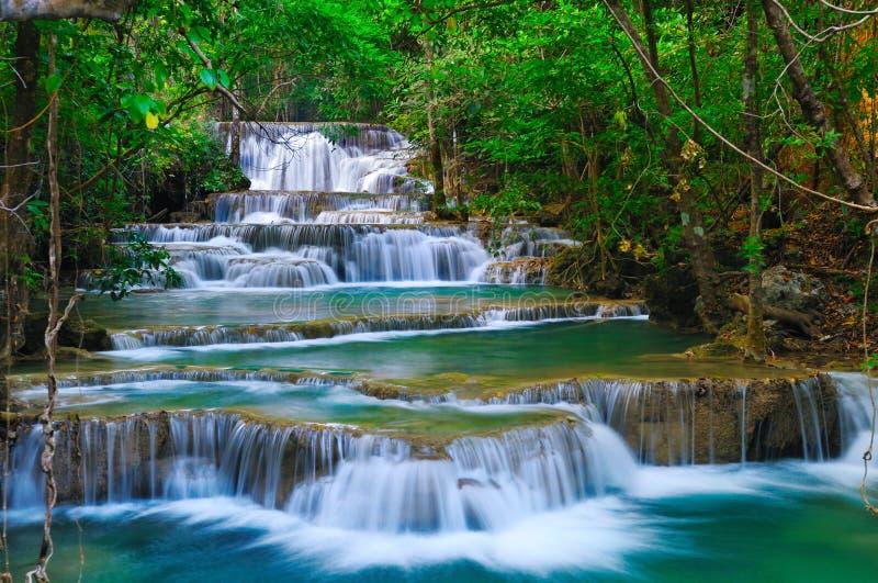 深森林kanchanaburi泰国瀑布 免版税库存照片