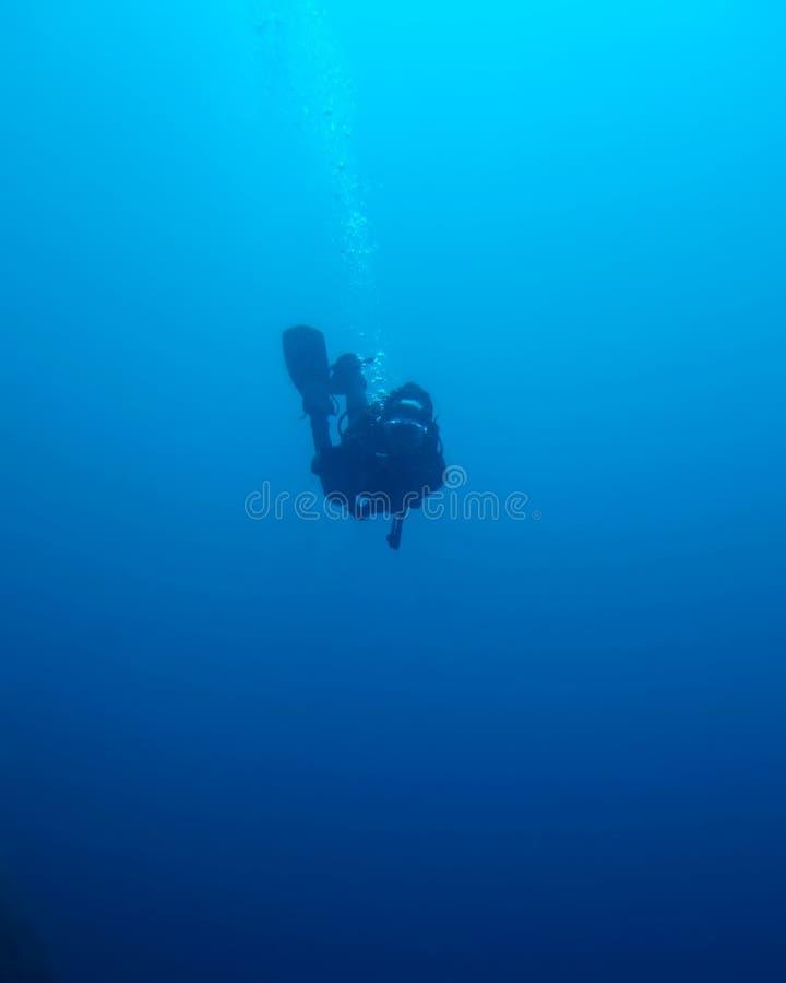 深潜水员去的剪影 免版税库存照片