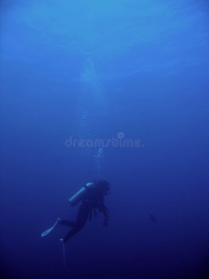 深潜潜水员水肺 免版税库存照片