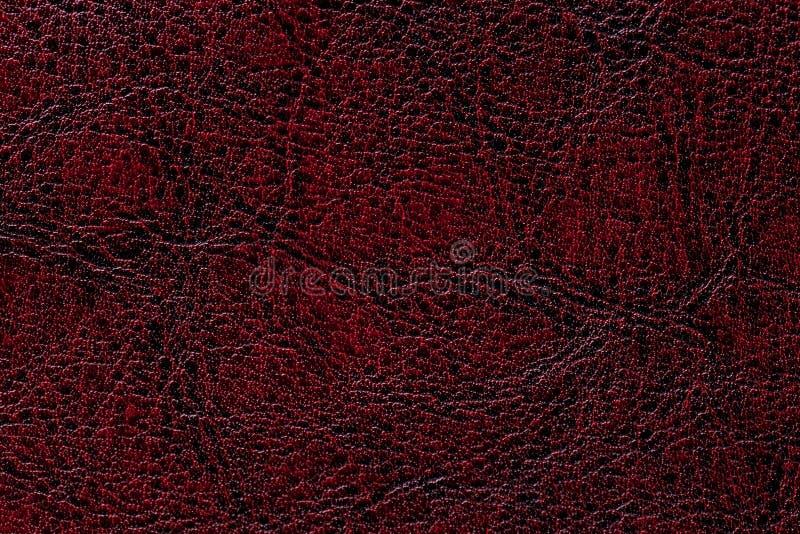 深红皮革纹理背景,特写镜头 鲁宾崩裂了从皱痕皮肤的背景 免版税库存图片