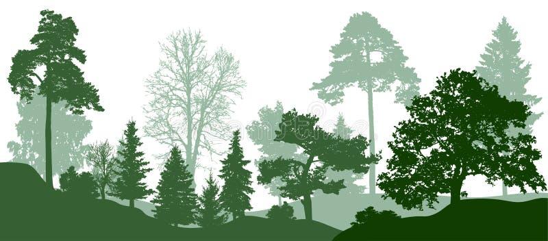深绿色树剪影 自然,公园 向量背景 向量例证
