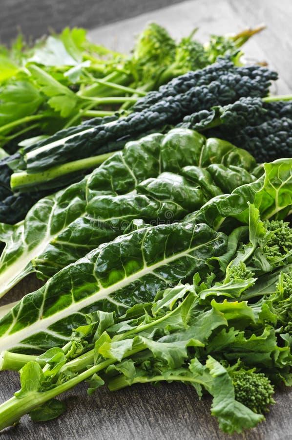 深绿阔叶蔬菜 库存照片