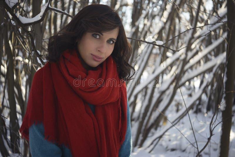 深色的女孩在红色围巾和蓝色冬天外套穿戴了 库存照片