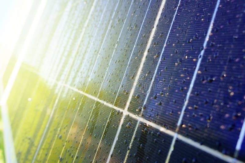 深蓝太阳电池板特写镜头与水绿色树和房子的下落和反射的 库存图片