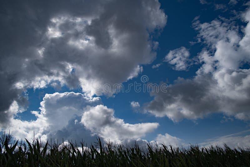 深蓝风雨如磐的天空背景 免版税库存图片