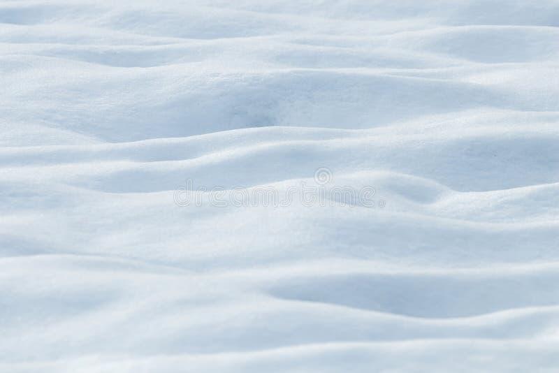 深雪漂移冬天背景 免版税图库摄影