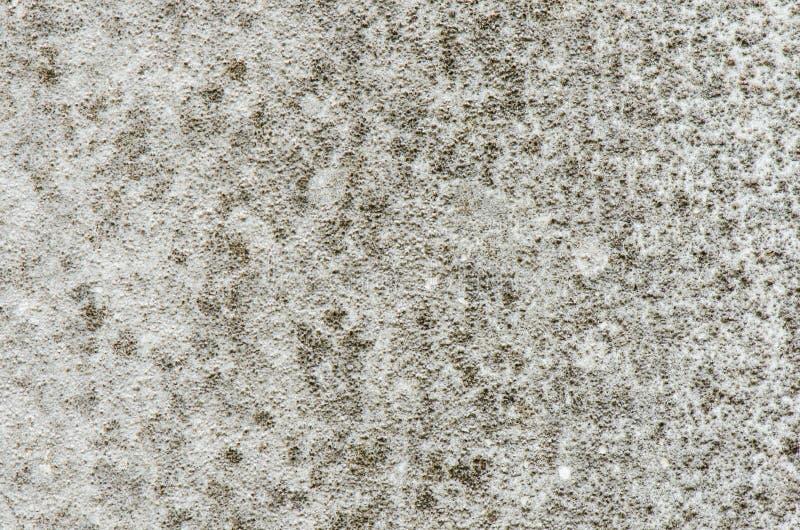 混凝土墙肮脏与发霉,难看的东西墙壁纹理或背景 免版税图库摄影