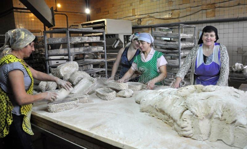 混合烘烤的面包的面团 免版税库存照片