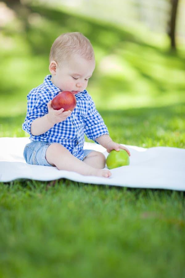 混合的族种婴儿男婴坐一揽子比较的苹果t 图库摄影