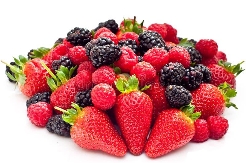 混合的浆果 库存图片