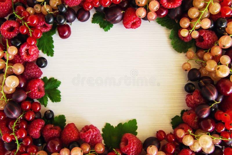 从混杂的夏天莓果的框架在白色木背景 库存图片