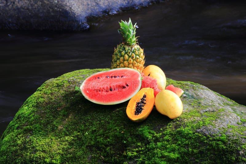 混杂的果子 免版税库存图片