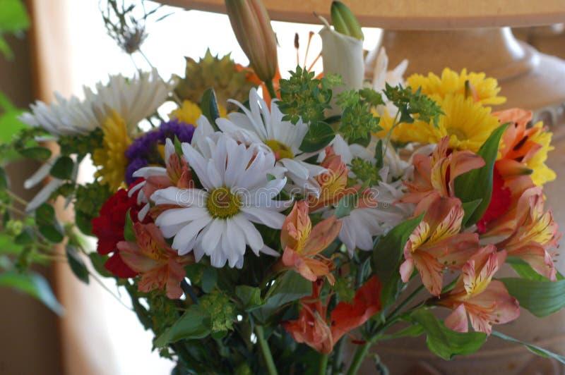 混杂的花议院花束  库存图片