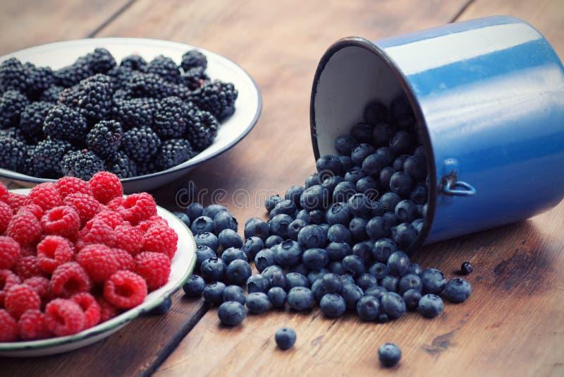 混杂的莓果 免版税库存图片