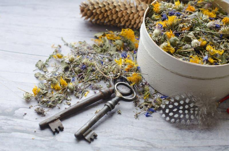 清凉茶用伊冯茶、矢车菊、金盏草、石南花和麝香草 健康和长寿的钥匙 免版税库存图片