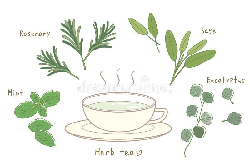 清凉茶设置了热的茶和杯 向量例证