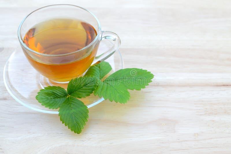 清凉茶 免版税图库摄影