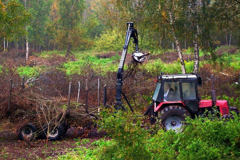 清扫森林残骸的拖拉机 库存图片