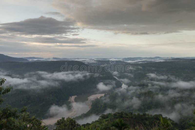 清早云彩形成在Karwani河,加罗丘陵,梅加拉亚邦,印度森林里  免版税库存图片