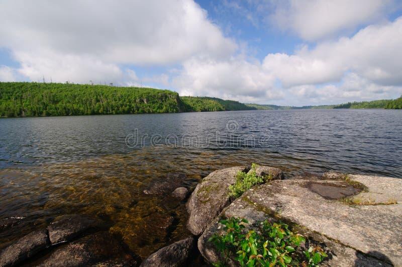 Download 清早北部森林 库存照片. 图片 包括有 早晨, 鼓胀, 安大略, 杉木, 全景, 北部, 自然, 原野, 独木舟 - 22354954