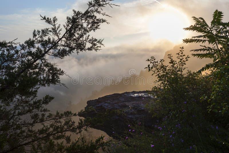 清早撒切尔公园的有雾的山景城 库存图片