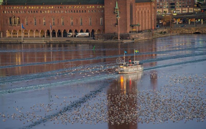 清早横渡在斯德哥尔摩香港大会堂前面的客船冻水 免版税库存照片