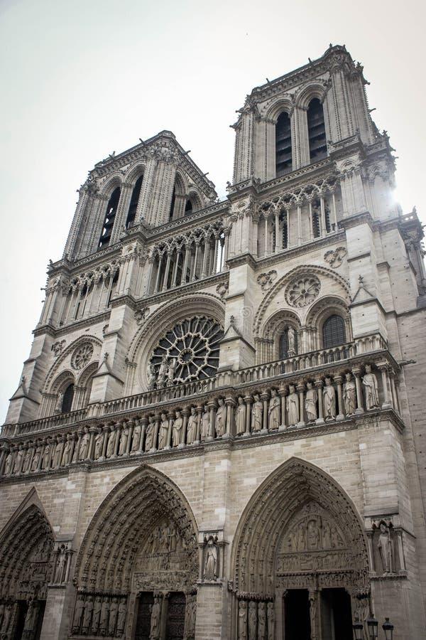 清早Notre Dame 免版税库存照片