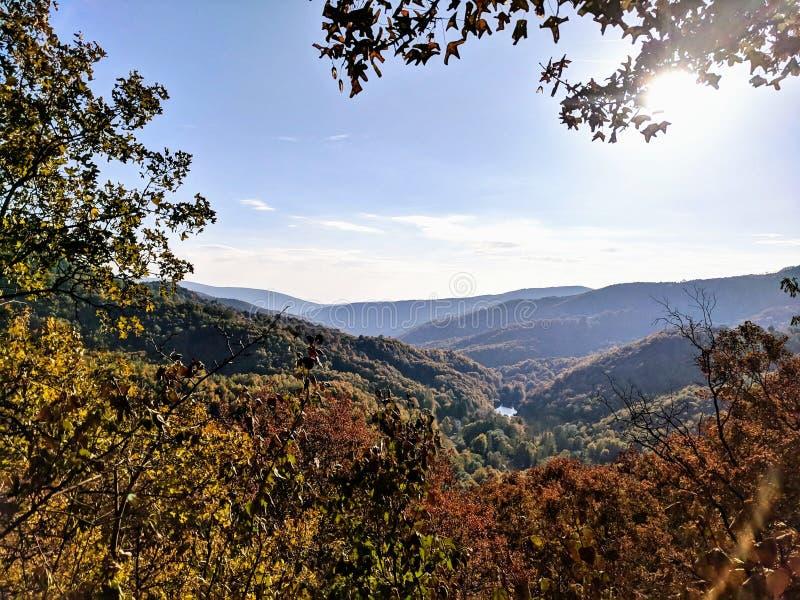 清楚的天空蔚蓝的树梢景色在谷的与湖 库存照片