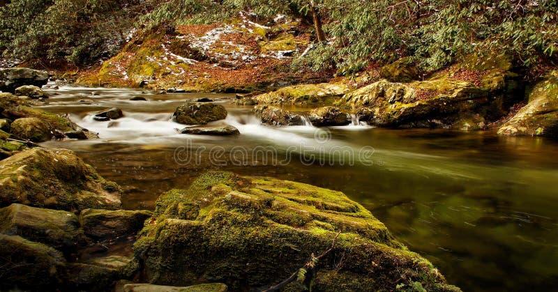 清楚的山小河在春天 库存图片