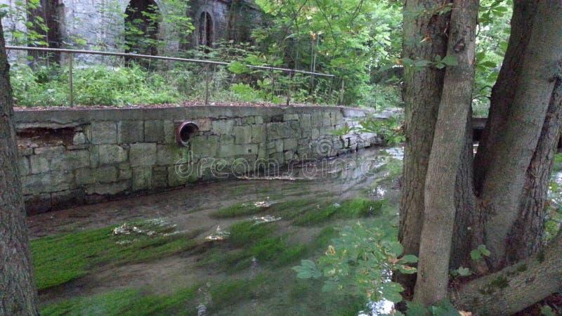 清楚的河 库存图片