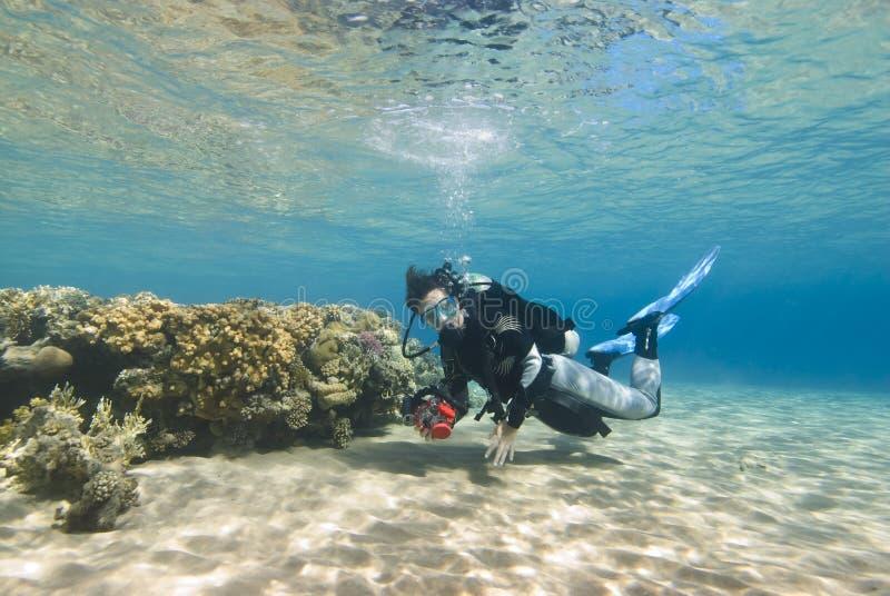 清楚的潜水员女性浅水区年轻人 免版税库存图片