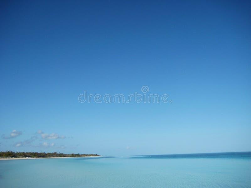 清楚的蓝天Caya椰树 免版税库存照片
