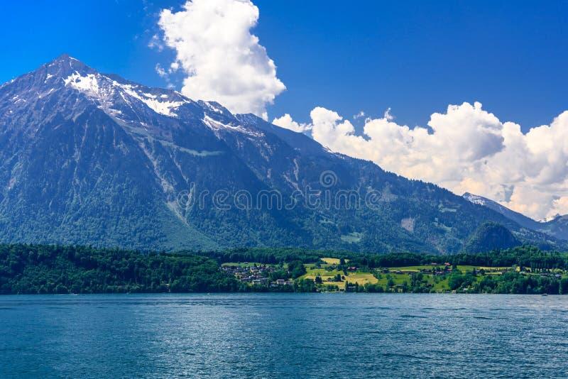 清楚的透明天蓝色的图恩湖,Thunersee,伯尔尼,瑞士 库存图片