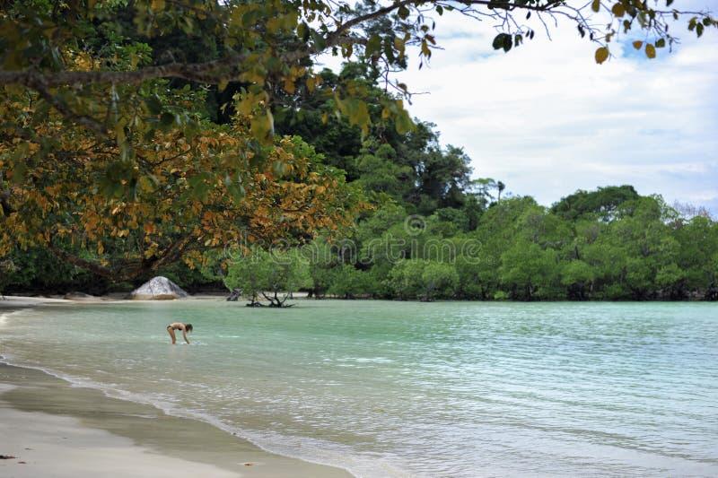 清楚的水海滩在泰国 免版税库存照片